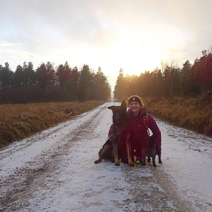 Dog Walking with Alex